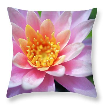 Pink Water Lily Throw Pillow by Kicka Witte