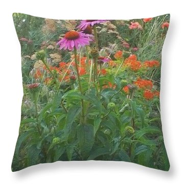 Pinkviolet Dasies With Garden Flowers Throw Pillow by Thelma Harcum
