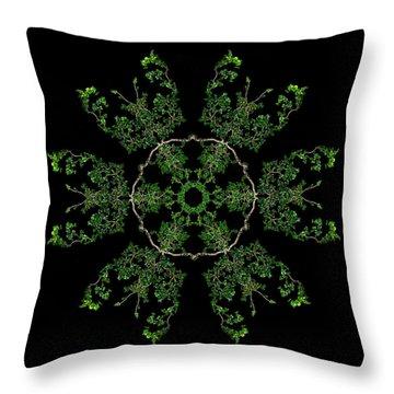 Pinwheel II Throw Pillow by Debra and Dave Vanderlaan
