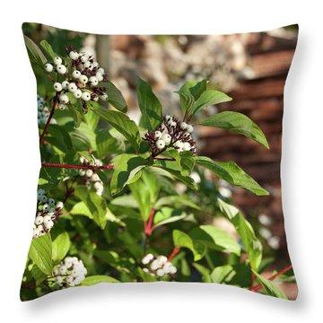 Plants Beside Beaver Creek Villa Throw Pillow