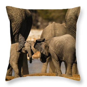 Play 5 Throw Pillow by Alistair Lyne