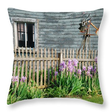 Play Time Throw Pillow by Janice Adomeit