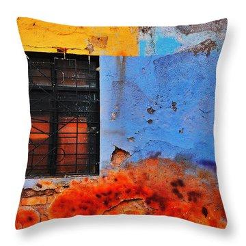Playa Throw Pillow by Skip Hunt