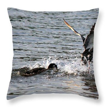 Throw Pillow featuring the photograph Playing Chase by Kathy  White