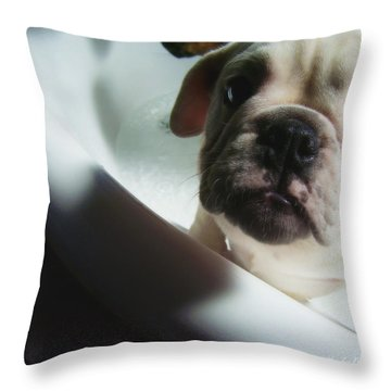 Throw Pillow featuring the photograph Plea For Help by Jeanette C Landstrom