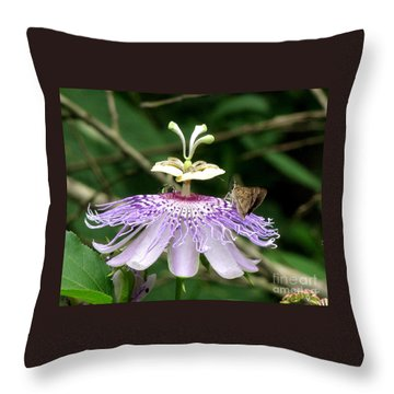 Plenty For All Throw Pillow by Donna Brown