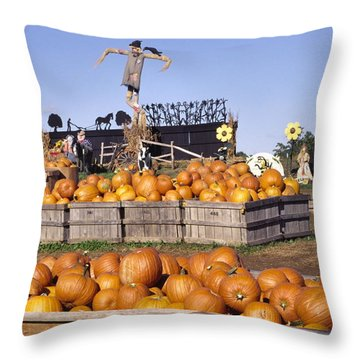 Plenty Of Pumpkins Throw Pillow by Sally Weigand