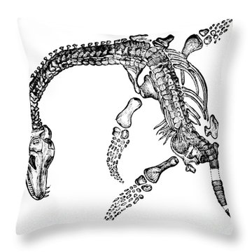 Plesiosaurus Throw Pillow by Science Source