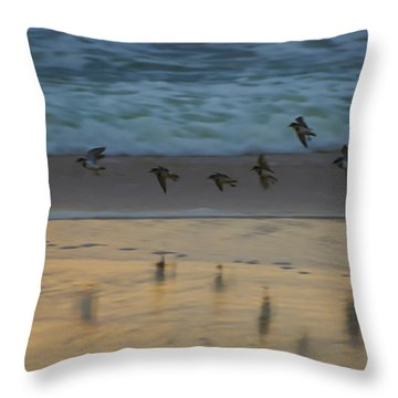 Plovers At Play On A Stormy Morning Throw Pillow