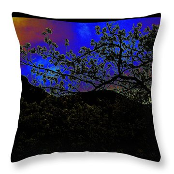 Throw Pillow featuring the photograph Plum Grove At Dusk by Susanne Still