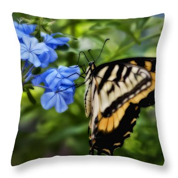 Plumbago And Swallowtail Throw Pillow by Steven Sparks