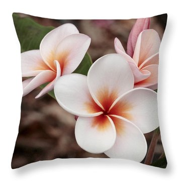 Plumeria   Kona Hawii Throw Pillow by James Steele