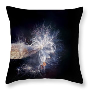 Throw Pillow featuring the photograph Pod In The Wind by Deniece Platt