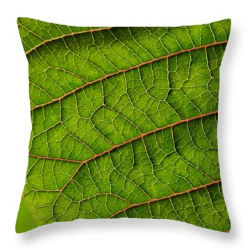 Poinsettia Leaf I Throw Pillow