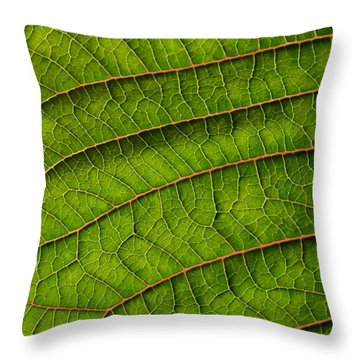 Poinsettia Leaf II Throw Pillow