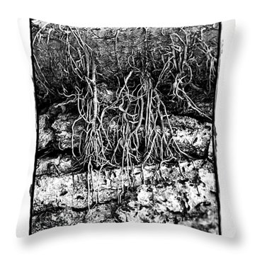Poison Ivy Roots Throw Pillow by Judi Bagwell