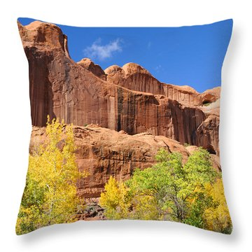 Poison Spider Mesa In The Fall Throw Pillow by Gary Whitton