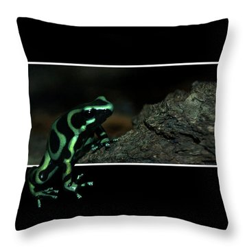 Poisonous Green Frog 02 Throw Pillow by Thomas Woolworth