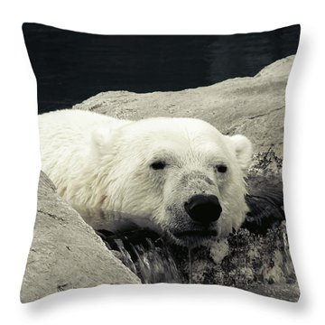 Polar Relaxation Throw Pillow