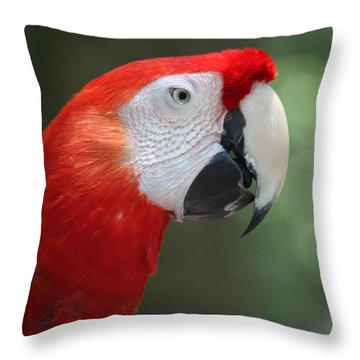 Polly Throw Pillow by Patrick Witz