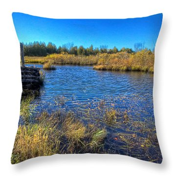 Pond 1 Today.psd Throw Pillow