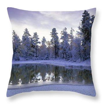 Pond And Fresh Snowfall, Near 70 Mile Throw Pillow by David Nunuk