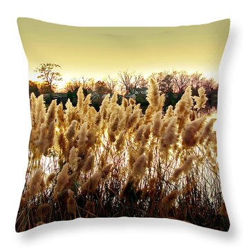Pond Grasses Throw Pillow by Brian Wallace