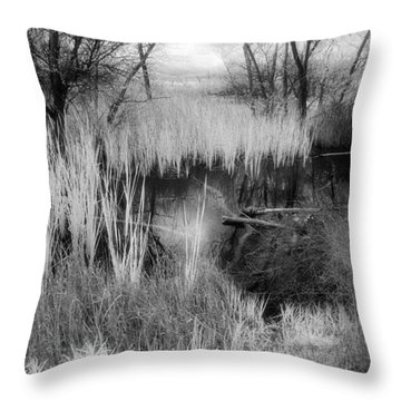 Pond Throw Pillow by Mark Greenberg