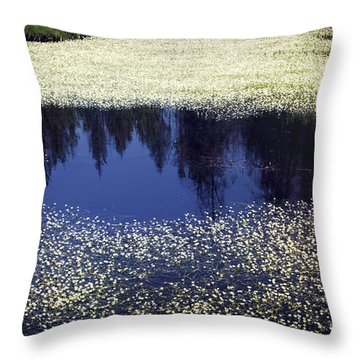 Pond Of Blooms Throw Pillow by Janie Johnson