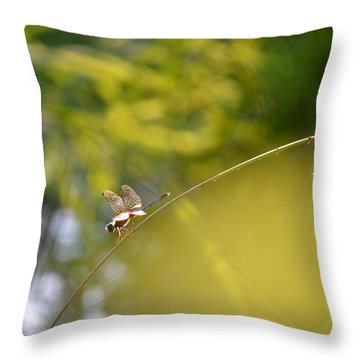 Throw Pillow featuring the photograph Pond-side Perch by JD Grimes