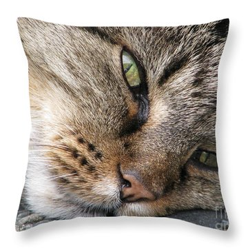Pondering Throw Pillow by Rory Sagner