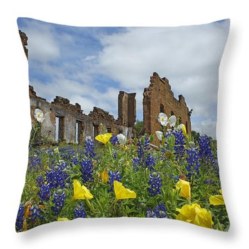 Pontotoc Schoolhouse Throw Pillow