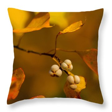 Throw Pillow featuring the photograph Popcorn Tree by Dan Wells