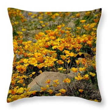 Poppies Everywhere Throw Pillow