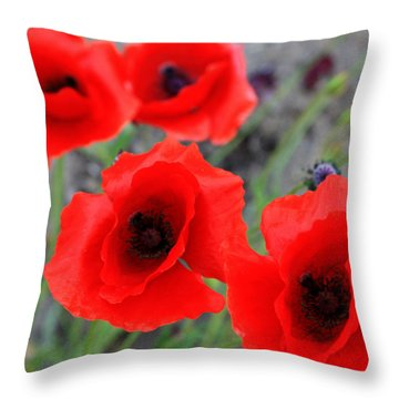 Poppies Of Stone Throw Pillow by Empty Wall