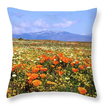 Poppies Over The Mountain Throw Pillow