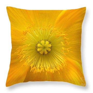 Poppy 2 Throw Pillow