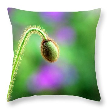 Throw Pillow featuring the photograph Poppy Bud by Linda Cox