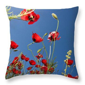 Poppy Field Throw Pillow by Ayhan Altun