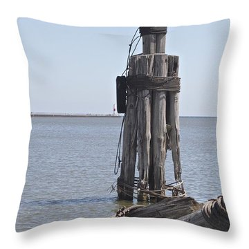 Throw Pillow featuring the photograph Port Of Rochester by William Norton