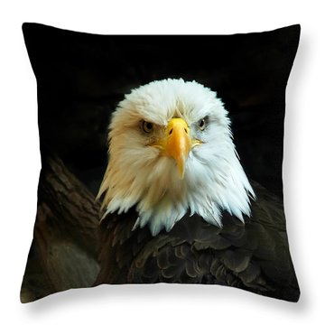 Throw Pillow featuring the photograph Portrait American Bald Eagle by Randall Branham