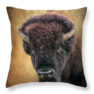 Portrait Of A Buffalo Throw Pillow