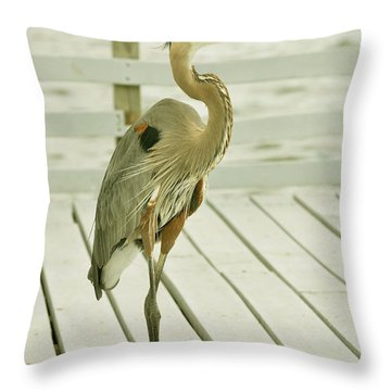 Portrait Of A Heron Throw Pillow by Rick Frost