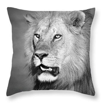 Portrait Of A Lion Throw Pillow by Richard Garvey-Williams