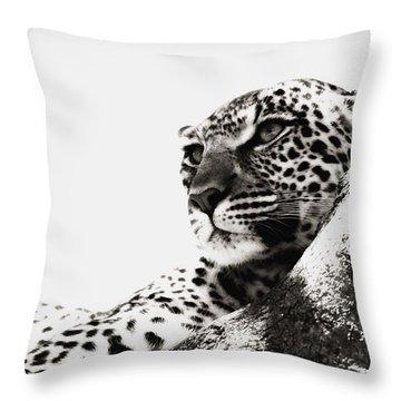 Portrait Of An African Leopard Throw Pillow by Carson Ganci