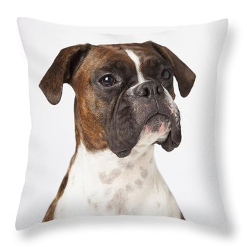 Portrait Of Boxer Dog On White Throw Pillow by LJM Photo
