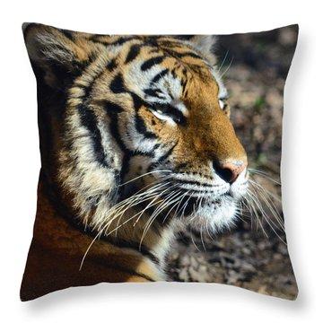 Portrait Of Kisa Throw Pillow by Sandi OReilly