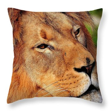 Portrait Of The King Throw Pillow