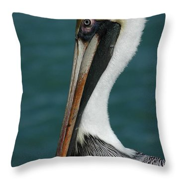 Posing For The Tourists Throw Pillow by Vivian Christopher