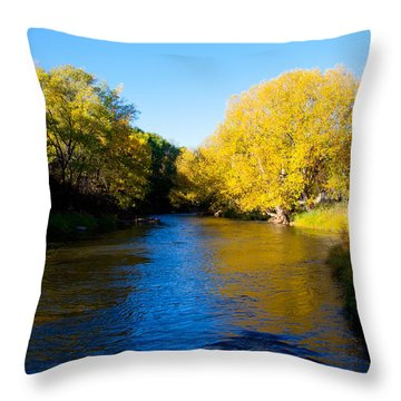 Poudre River Throw Pillow by Dana Kern